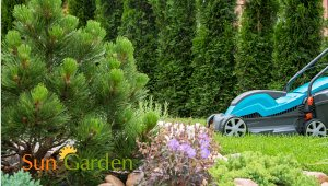 Sun Garden Garden center and Landscape Design